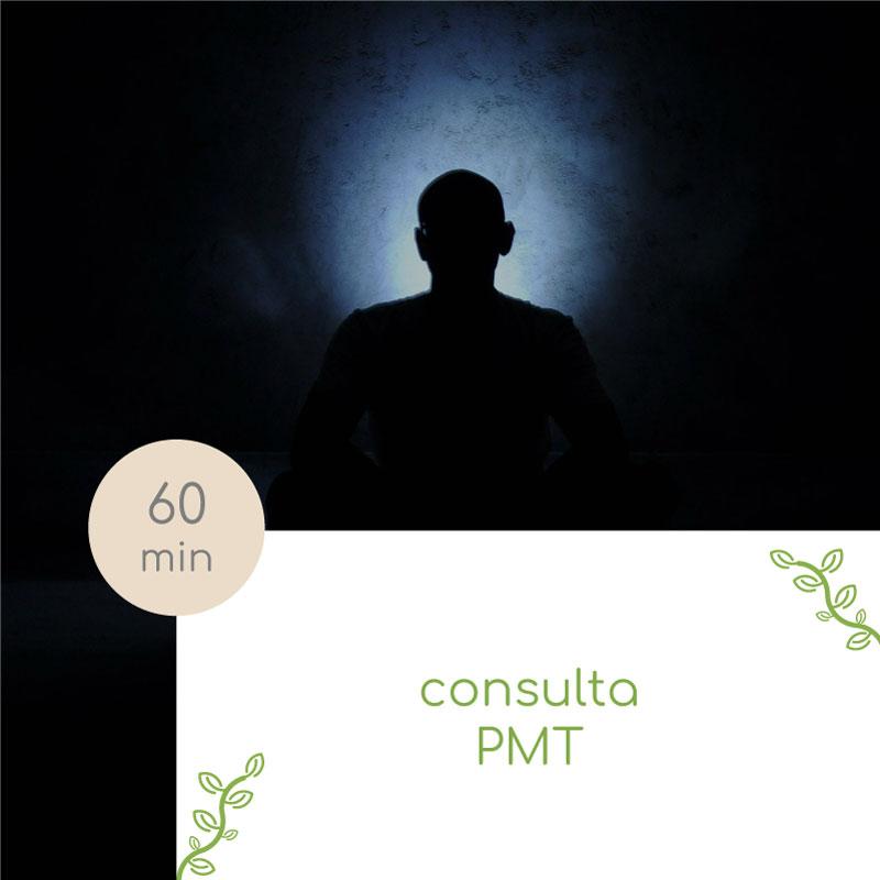 consulta pmt